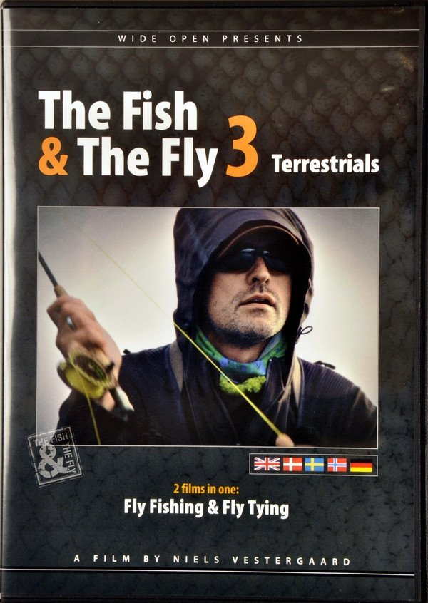 The Fish & The Fly 3