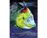 Drømmefiskeri Bog