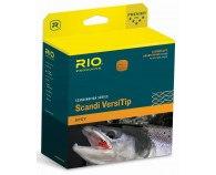 Rio Scandi Short Versitip